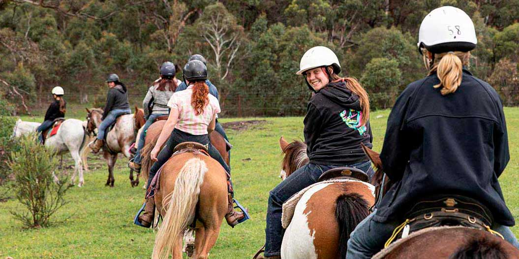 Ride out with  our quiet horses and friendly guides